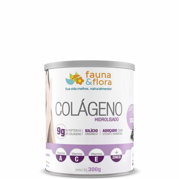 Colágeno Hidrolisado com Silício Orgânico zero Malto sabor Uva 300g