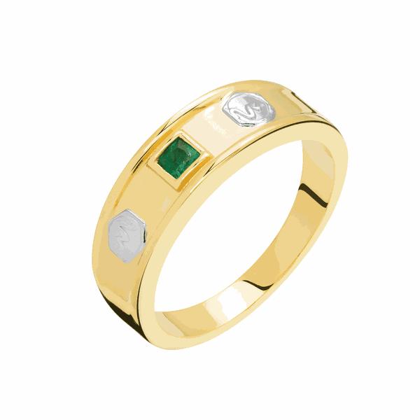 Anel de Formatura Ouro 18K Símbolo e Pedras da Profissão