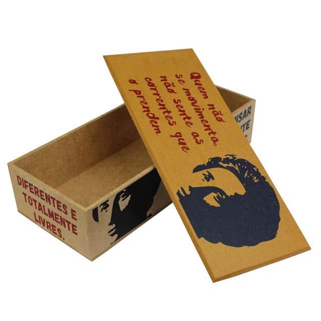 Caixa Bacana Rosa Luxemburgo
