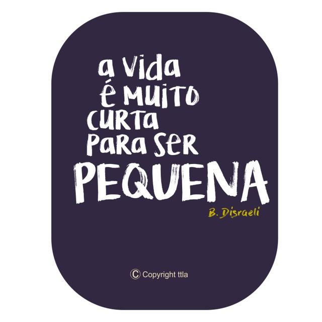 Camiseta Disraeli Marinho