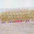 Passamanaria Lamê Margarida 410 - Dourado (pacte de 5 metros)