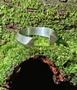 Anel Regulável Arco Aço Inox Prateado